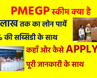 pmegp application